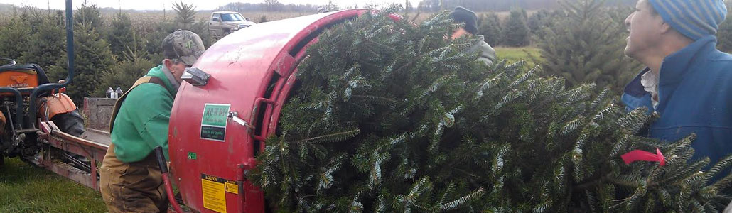 wholesale christmas trees wreaths - Christmas Wholesale